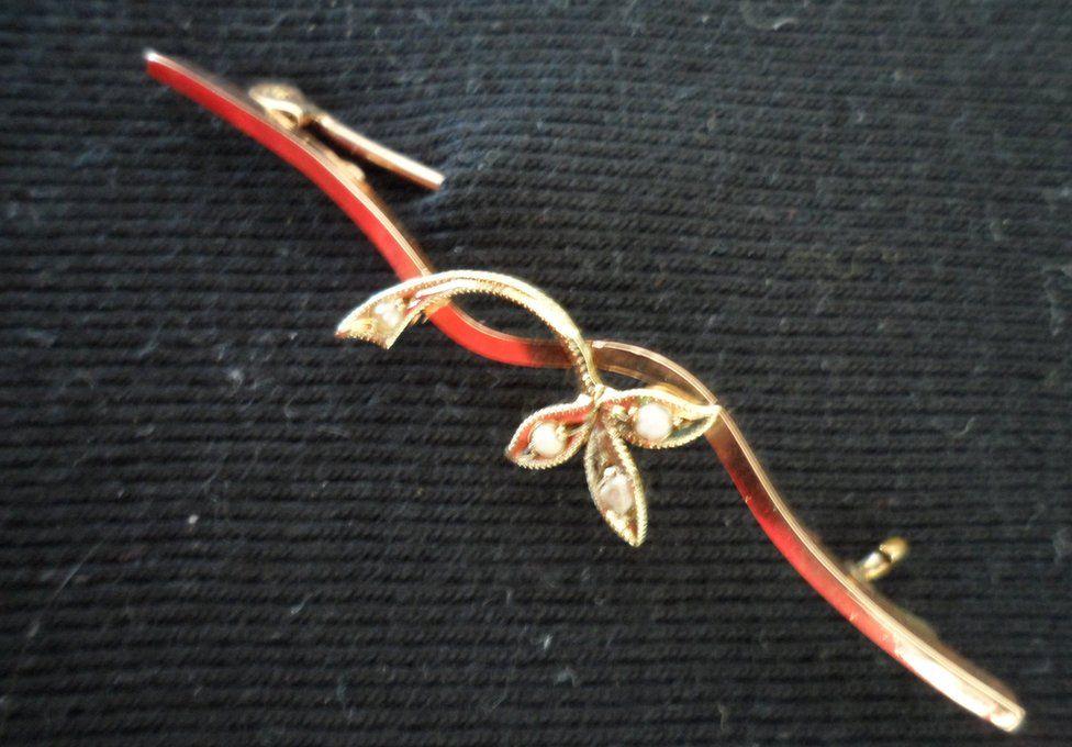 Picture of Julie Denham's brooch