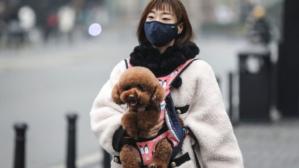 A woman wears a mask while carrying a dog in the street in Wuhan, China