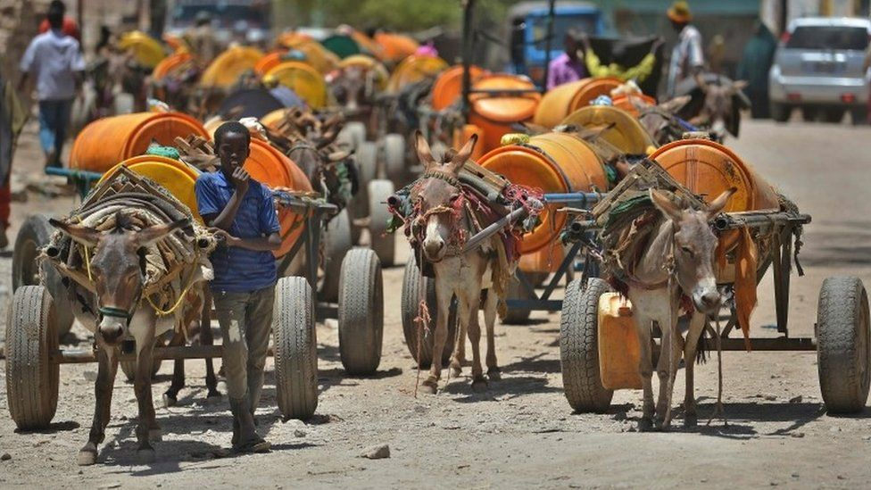 A young boy waits next to his donkey-cart to fill drums with water before selling it on March 15, 2017 in Baidoa, in the southwestern Bay region of Somalia, where the spread of cholera has claimed tens of lives of internally displaced people fleeing the parched countryside