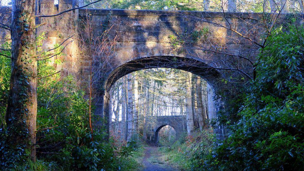 Bridge in a bridge