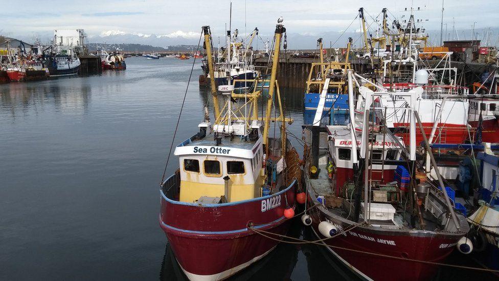 Trawlers in the harbour in Brixham, Devon.
