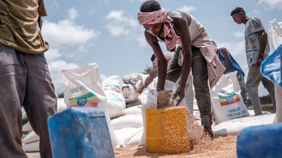 A man pours wheat into a container during a food distribution organized by the Amhara government near the village of Baker, 50 kms South East of Humera, in the northern Tigray Region on July 11, 2021.