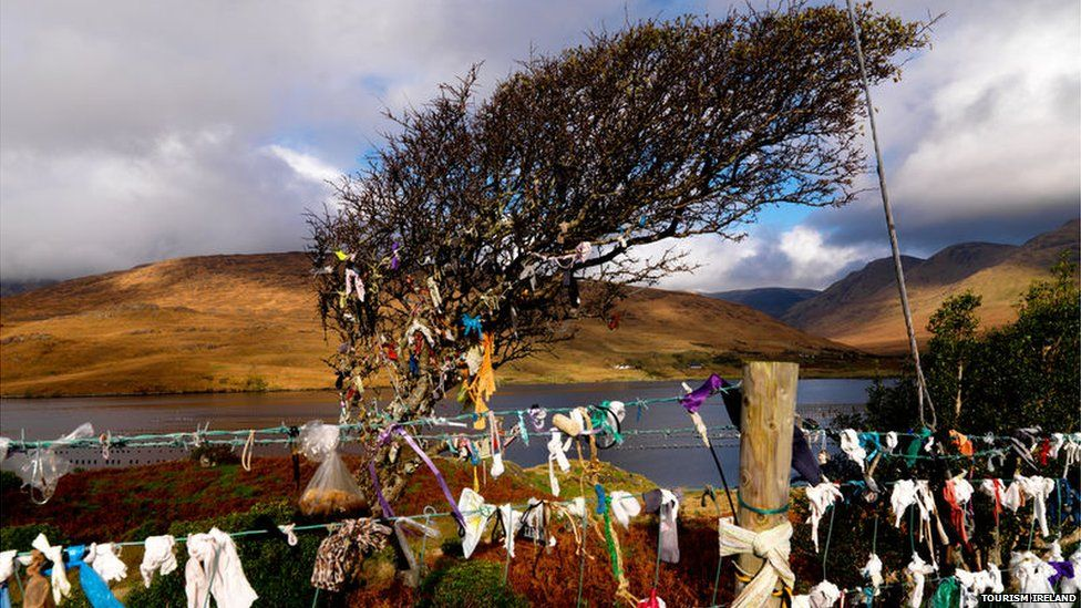 Fairy tree at Killary Harbour, County Galway, file pic