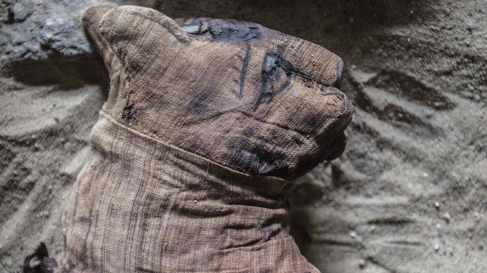 A mummified cat at the area near King Userkaf pyramid complex in Saqqara Necropolis on November 10, 2018