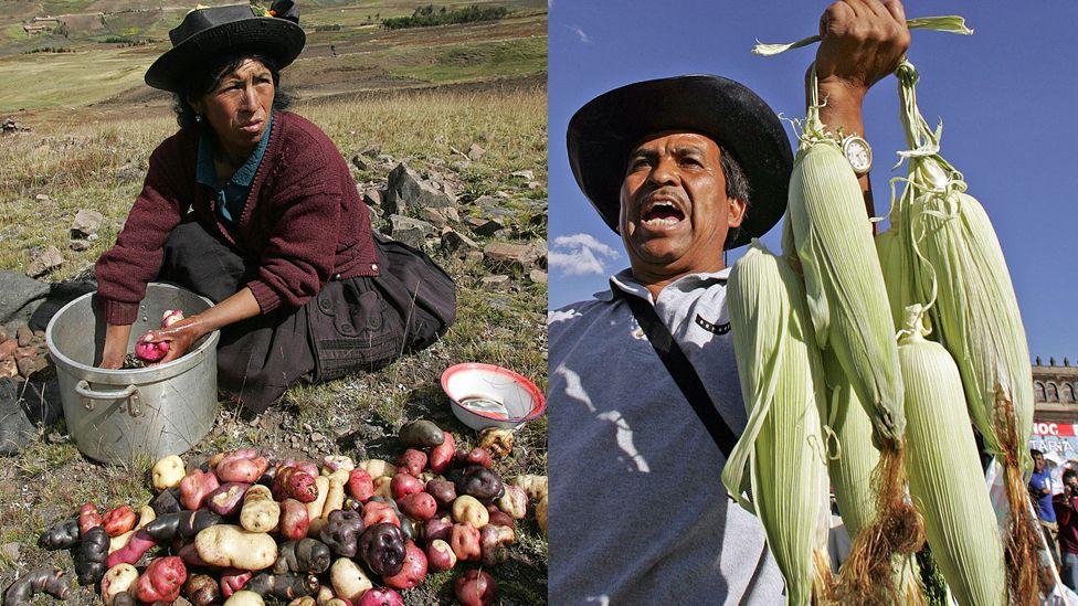 Perú vs. México: quién gana la batalla de las dos grandes cocinas latinoamericanas