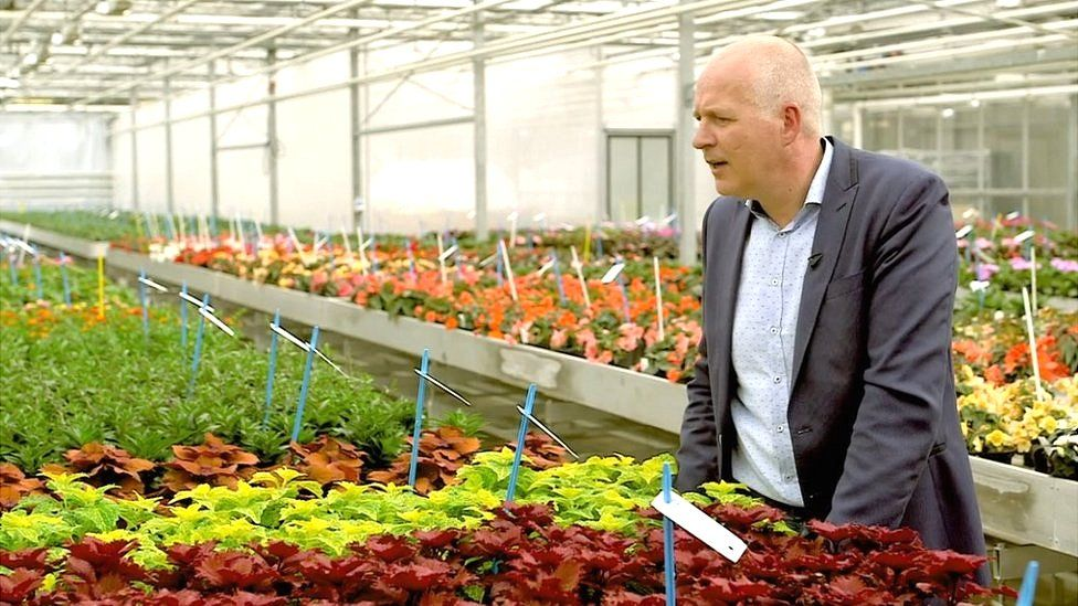 Marck Strik in flower greenhouse