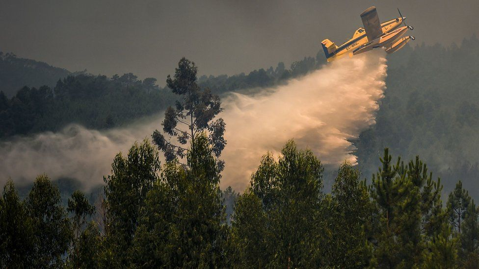 A firefighting plane drops water over a wildfire at Relva in Macao, central Portugal on July 21, 2019