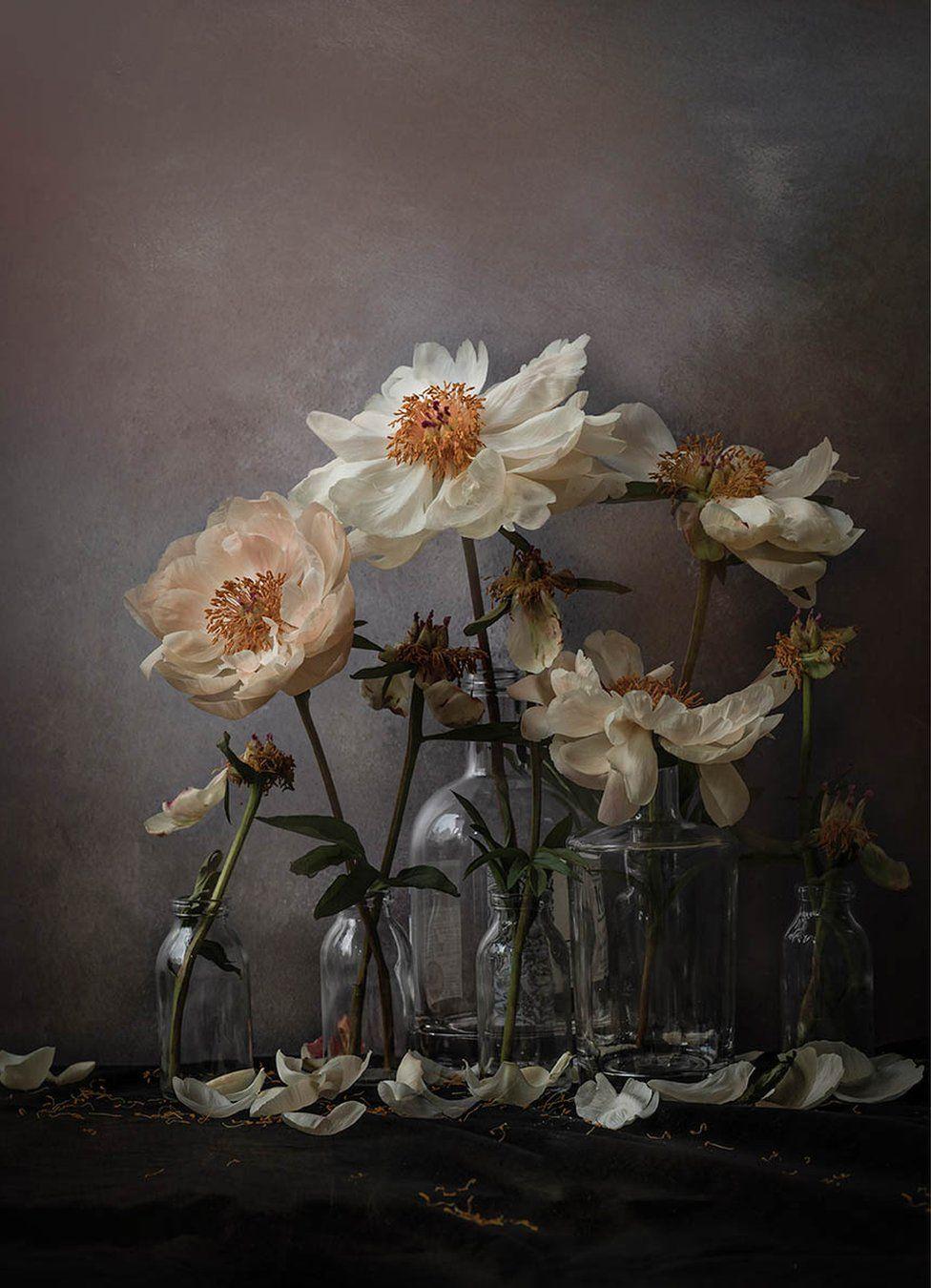 Flowers in empty gin bottles