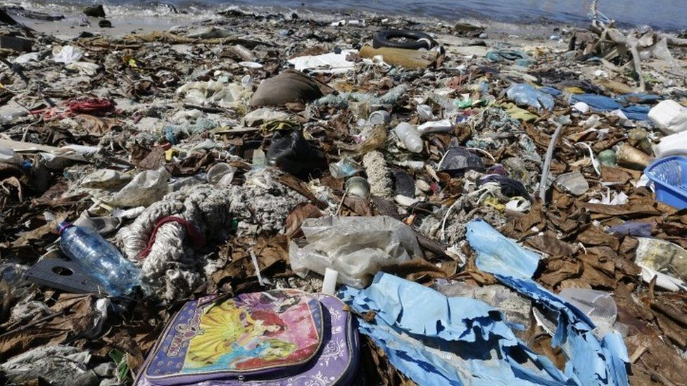 A carpet of rubbish lines a shore of the Guanabara Bay, in Rio de Janeiro (01 August 2016)