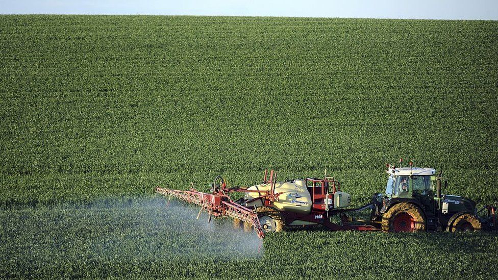 A farmer sprays a chemical fertilizer on his wheat field in France