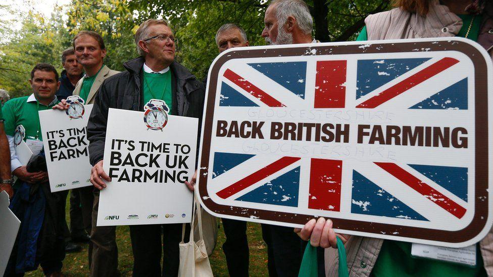 Farmers in Brussels