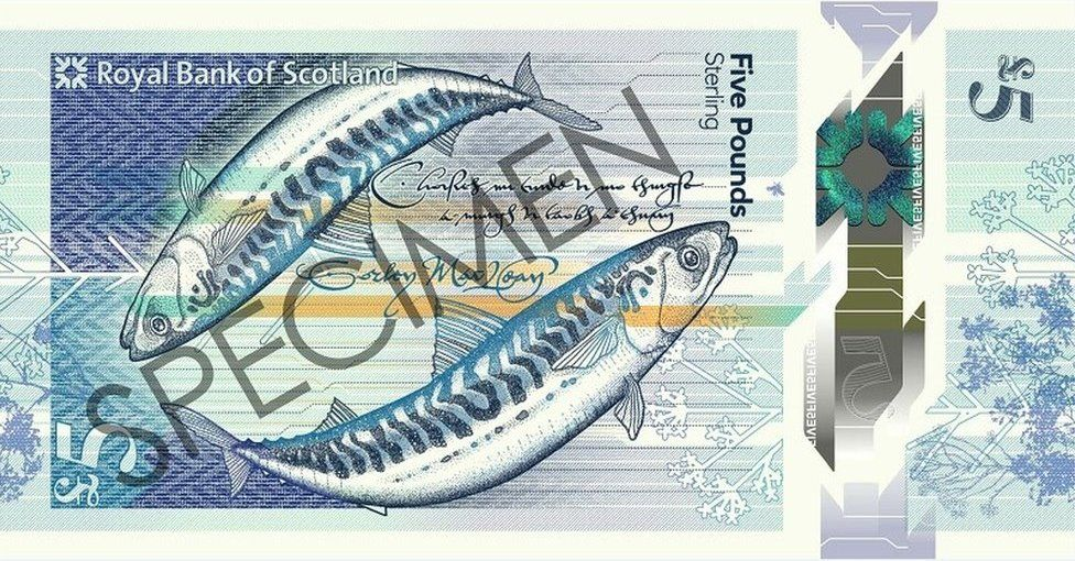 Reverse side of new £5 note
