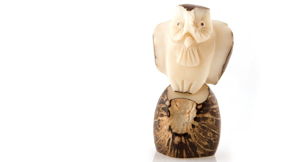 An owl sculptured from tagua
