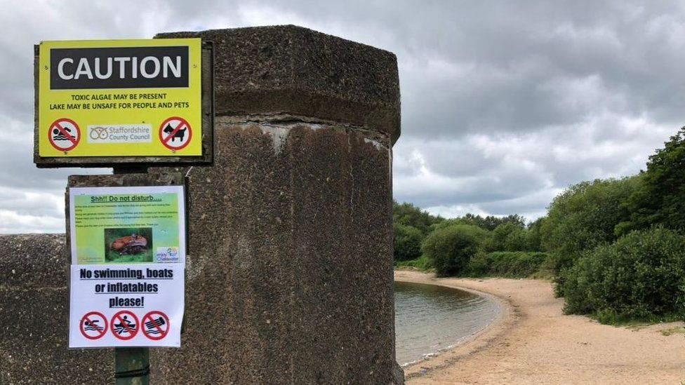 Warning at Chasewater Reservoir against swimming