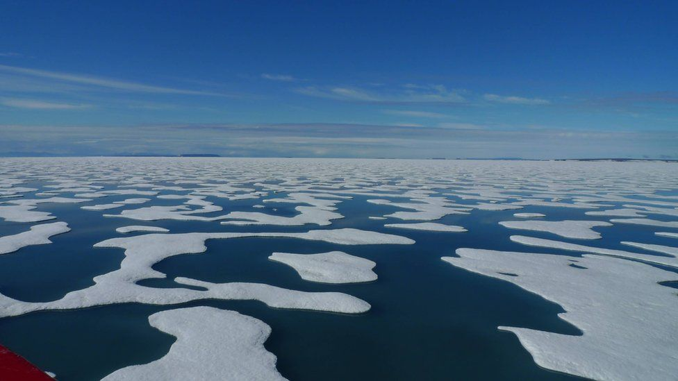 The Arctic is changing fast with various climate feedbacks expected as a consequence