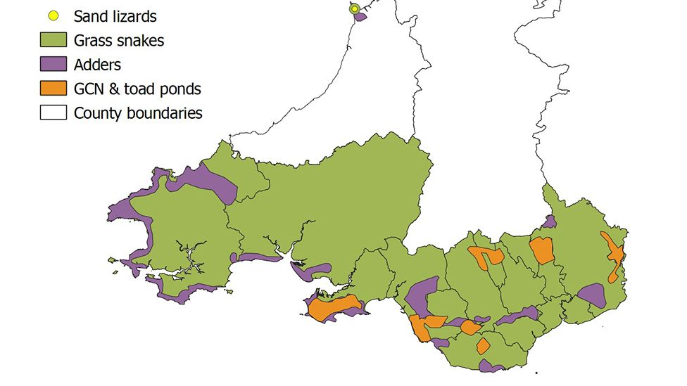 map of southern Wales showing reptile and amphibian populations