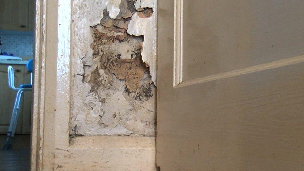 Damp wall inside Kenneth Bowen's house in Hawthorn, Pontypridd