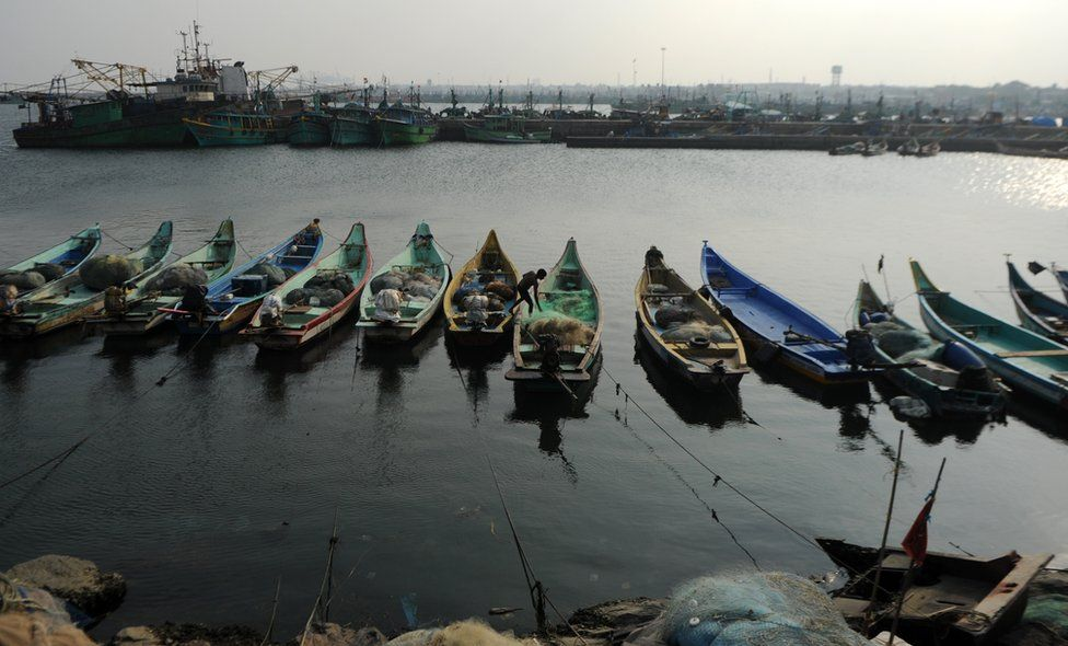 Representational image: boats anchored in the Chennai harbour