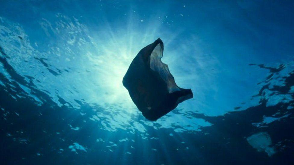 Plastic bag sea pollution