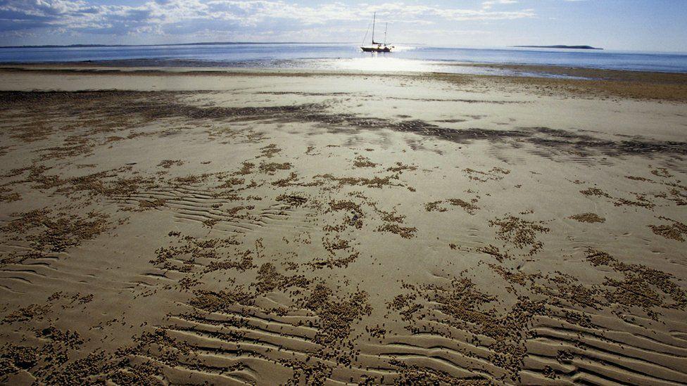 An area of coastline on Fraser Island, Queensland, Australia