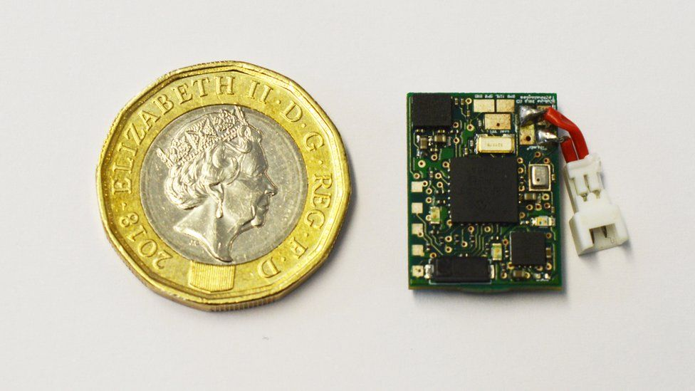 A small microchip next to a new £1 coin