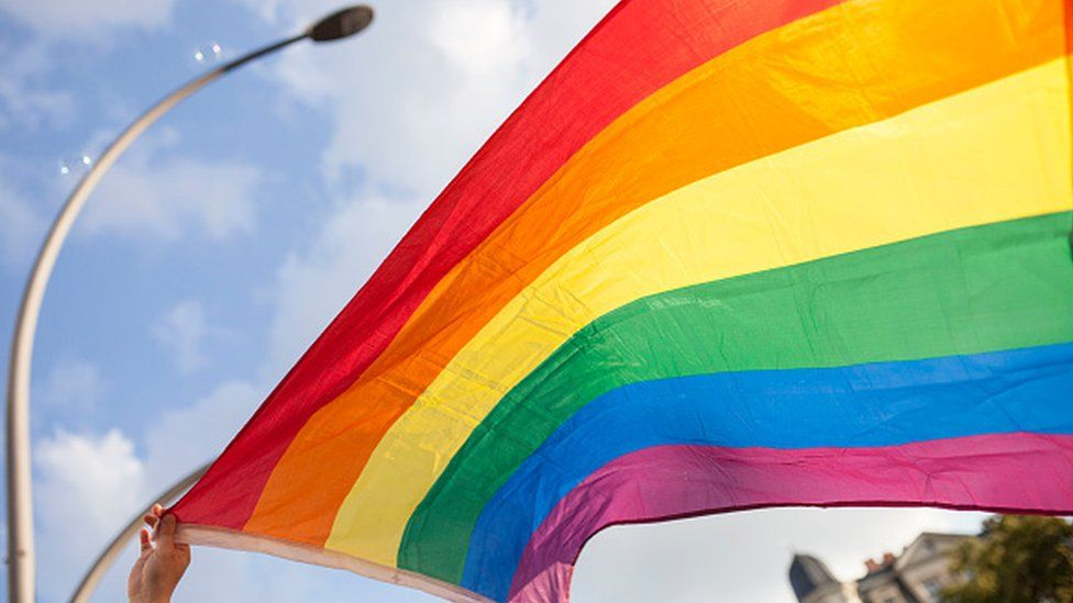 A participant a holding the pride flag during an LGBT march in Germany