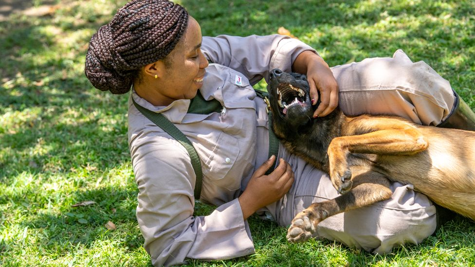 A trainee dog handler lounging on the grass and playing with a dog in Arusha, Tanzania