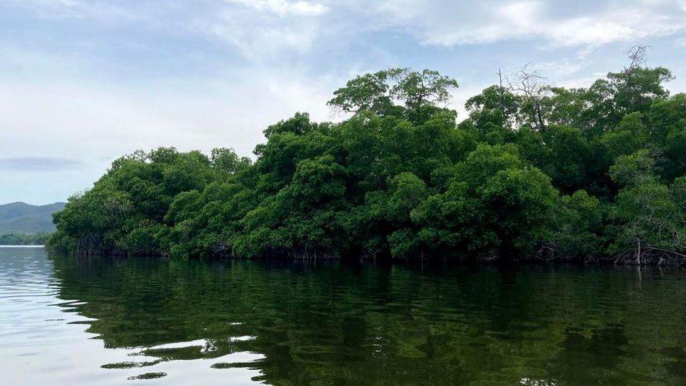 A lagoon in Puerto Escondido