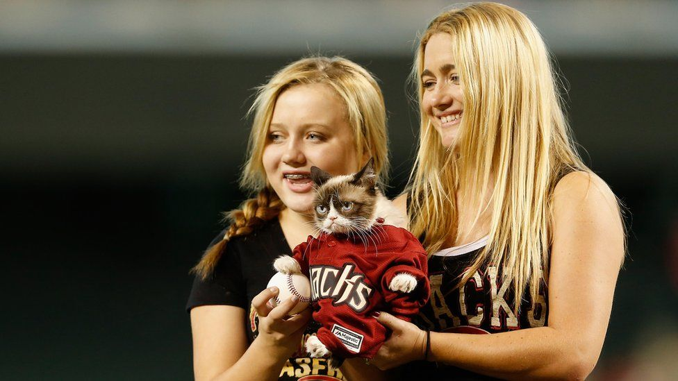 Grumpy cat, dressed in baseball shirt, appearing in Arizona in 2015 with her owners Chrystal and Tabatha Bundesen