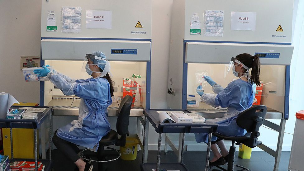 Lab testing coronavirus swabs