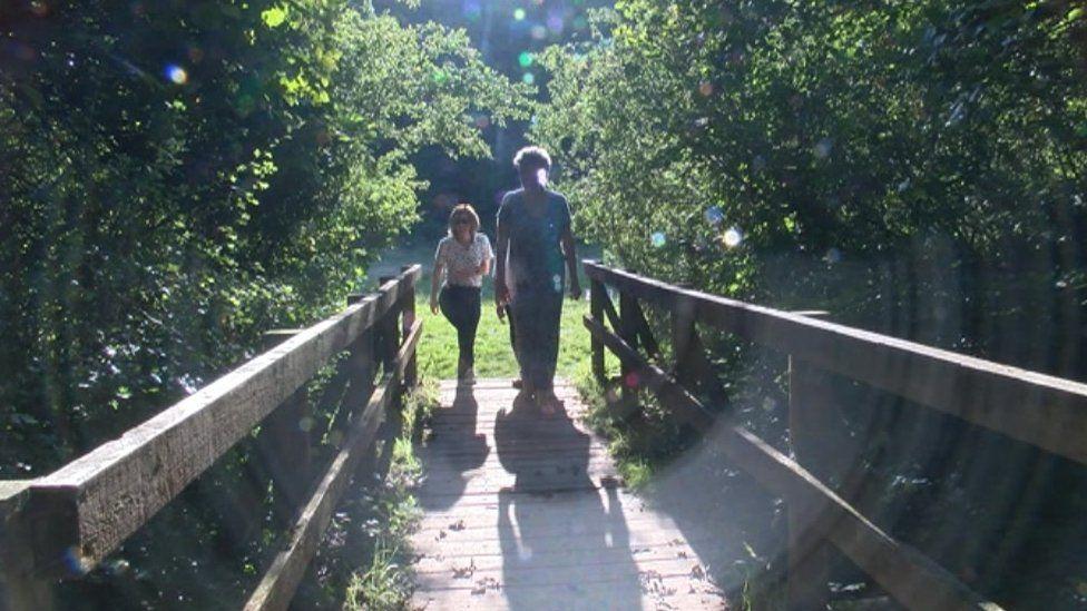 People walking in the woods