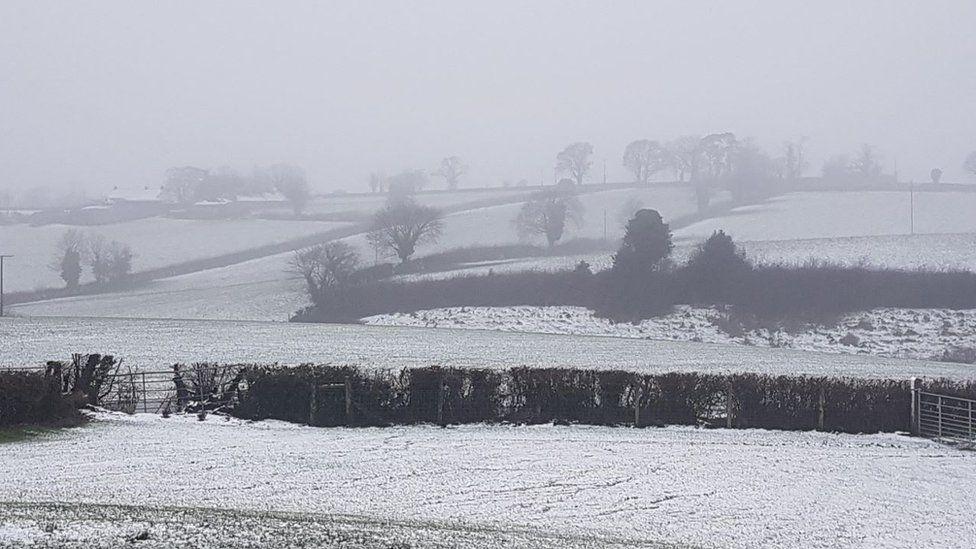Snow in Hamilton's Bawn