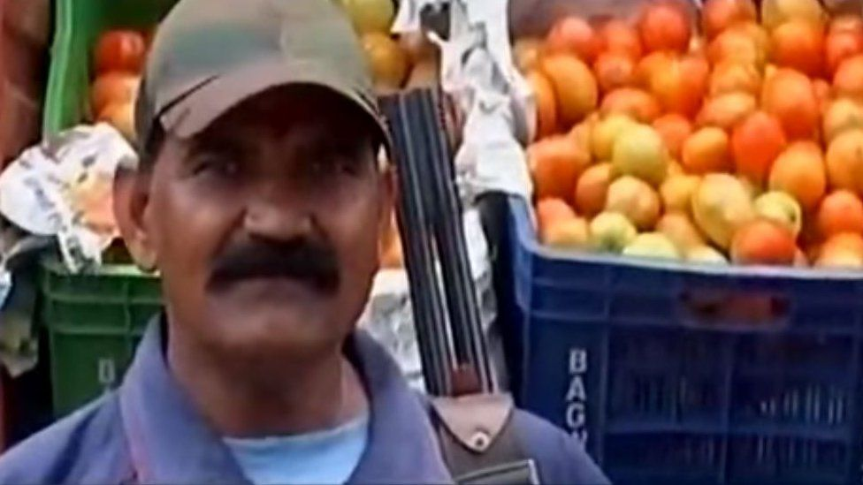 Guard in front of tomatoes