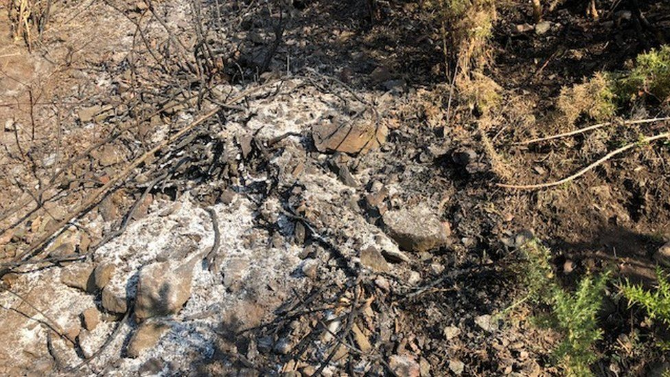 Fire damage on Arthur's Seat