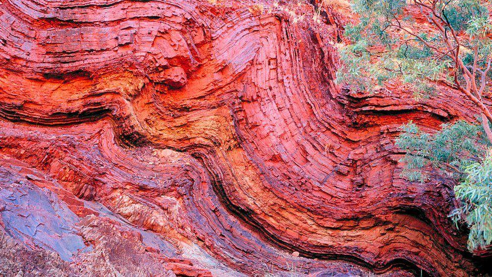 El novedoso método que permitió encontrar la evidencia más antigua de vida en la Tierra, de 3.500 millones de años