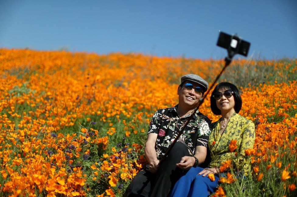 A couple takes a selfie photo in a super bloom of poppies in Lake Elsinore, California