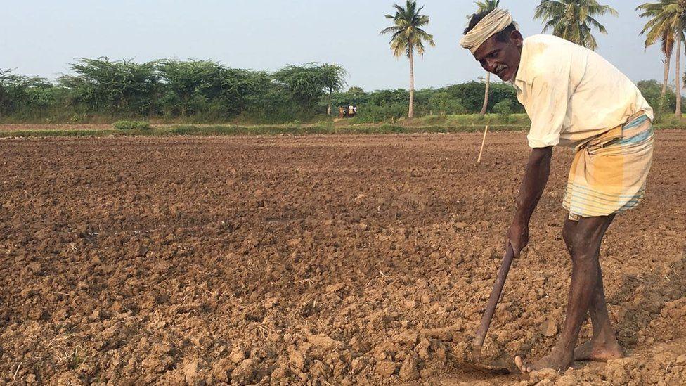Drought ht farm in Tamil Nadu