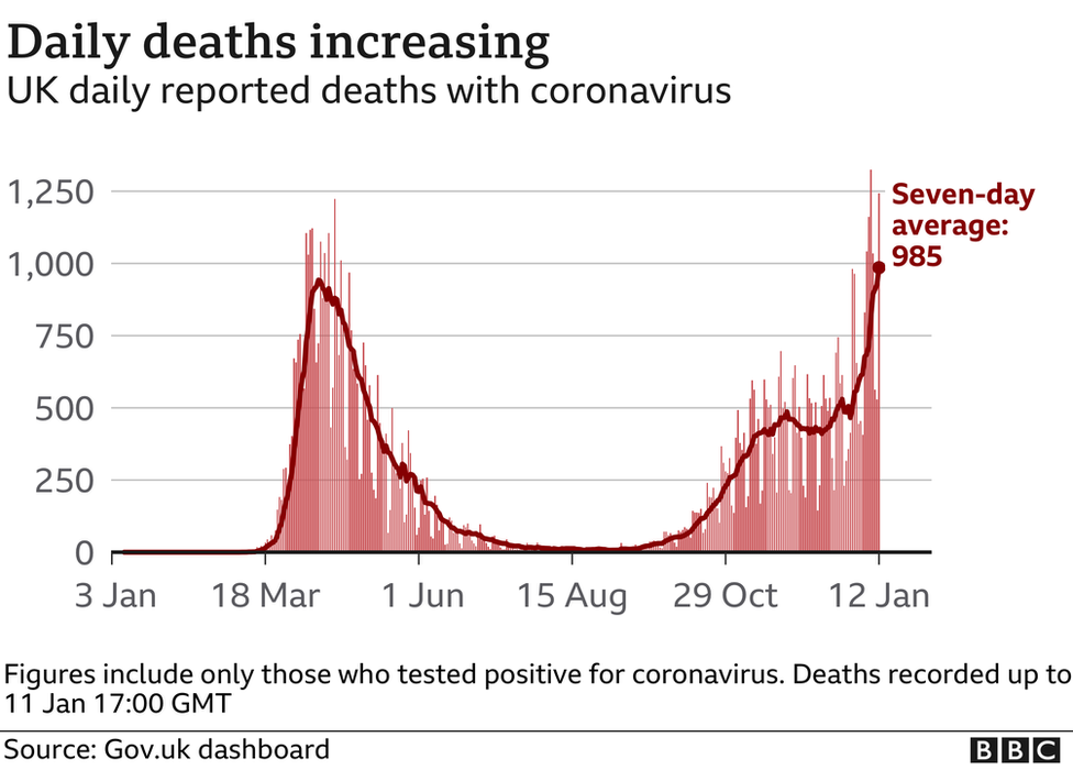 UK daily deaths graphic