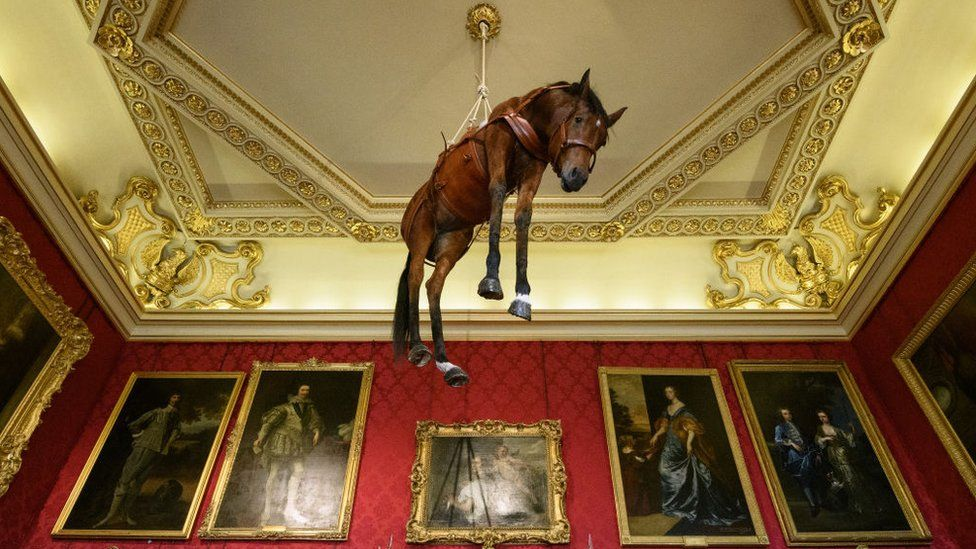 Horse hanging from ceiling