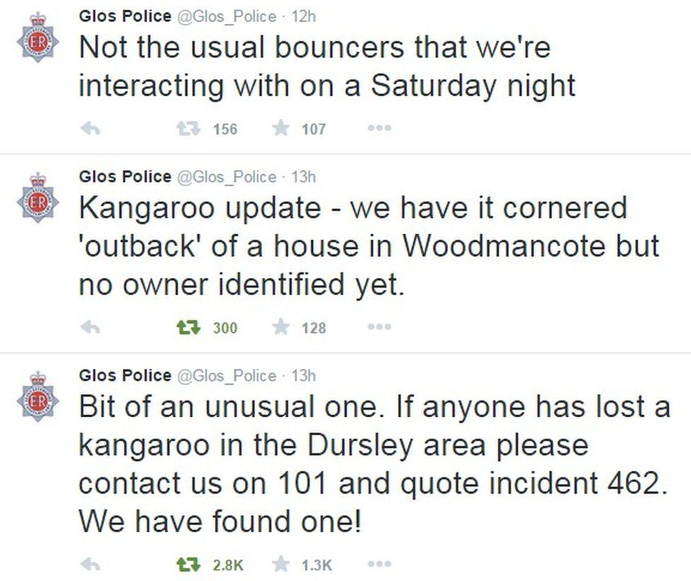 """""""Not the usual bouncers that we're interacting with on a Saturday night"""", says Gloucestershire Police on Twitter"""
