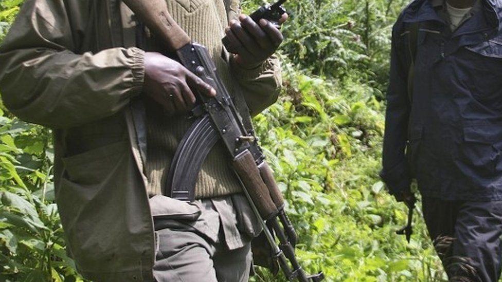 Armed rangers in the Virunga National Park. File photo