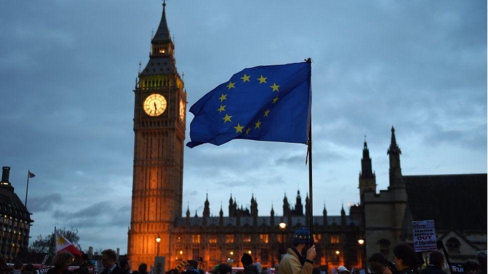 Houses of Parliament EU migrant protest