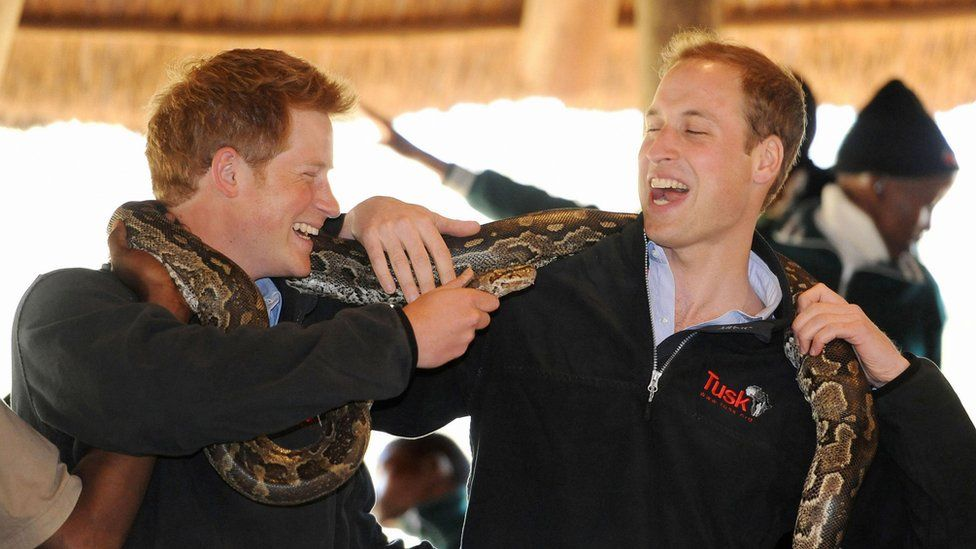Harry and William with snake