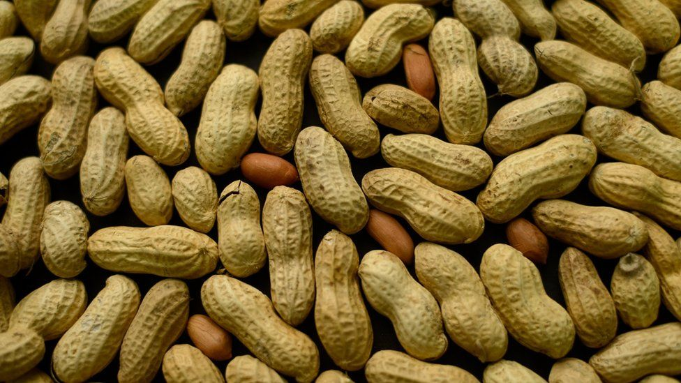 This Feb. 20, 2015 file photo, photo shows an arrangement of peanuts in New York