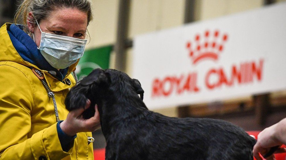 A woman wears a facemask at Crufts