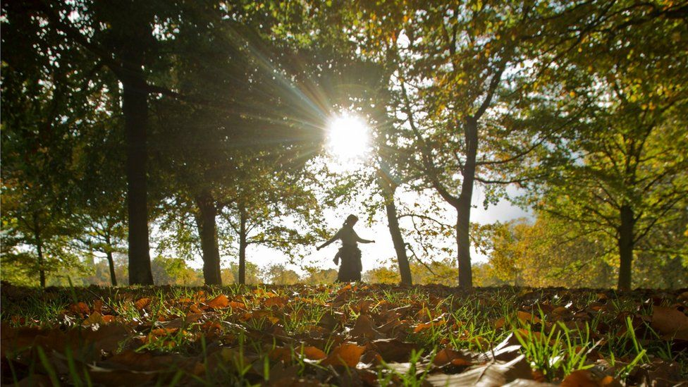Autumnal weather in Greenwich Park