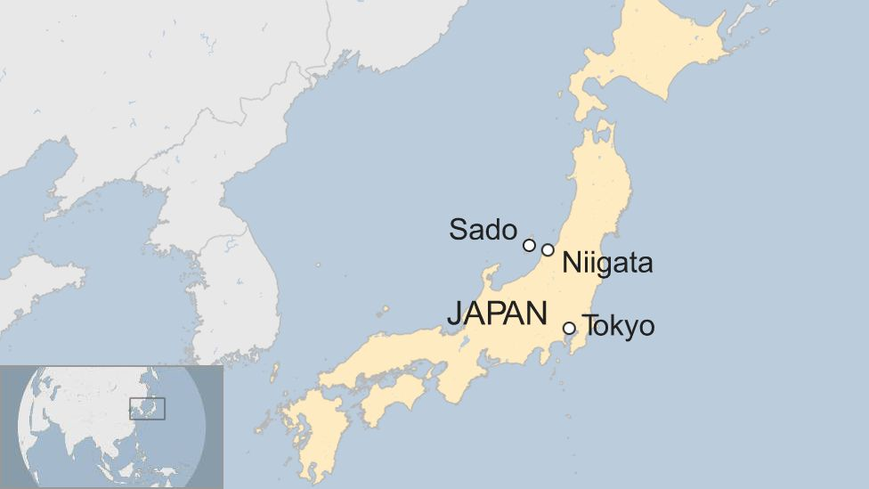 Japan ferry 'hits whale', injuring more than 80 on board - BBC News
