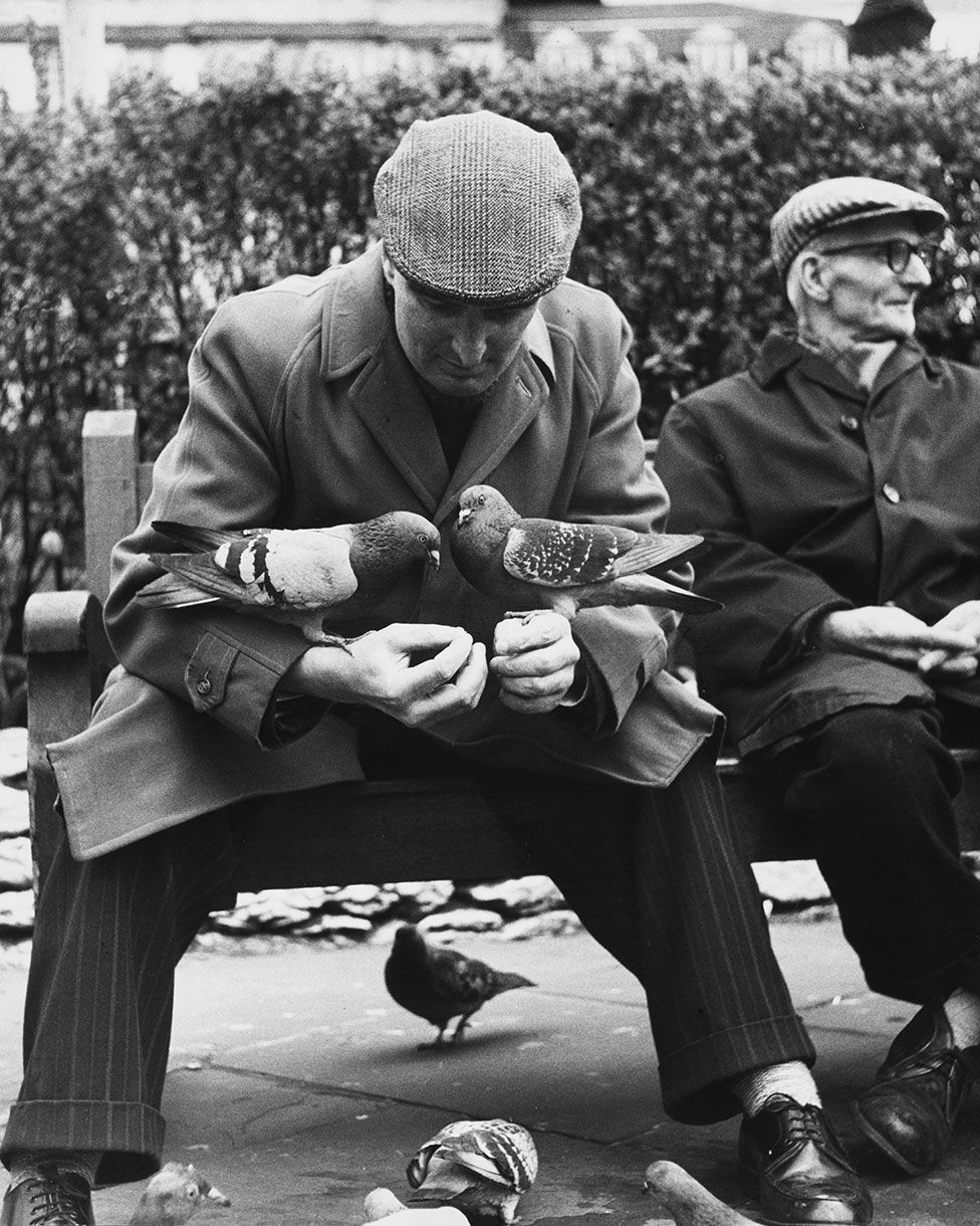 Two men sit on a bench, one with pigeons on his arms