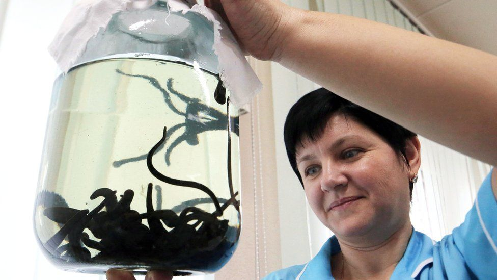 Nurse with jar of leeches