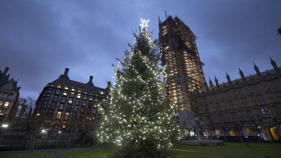 Christmas tree outside Parliament